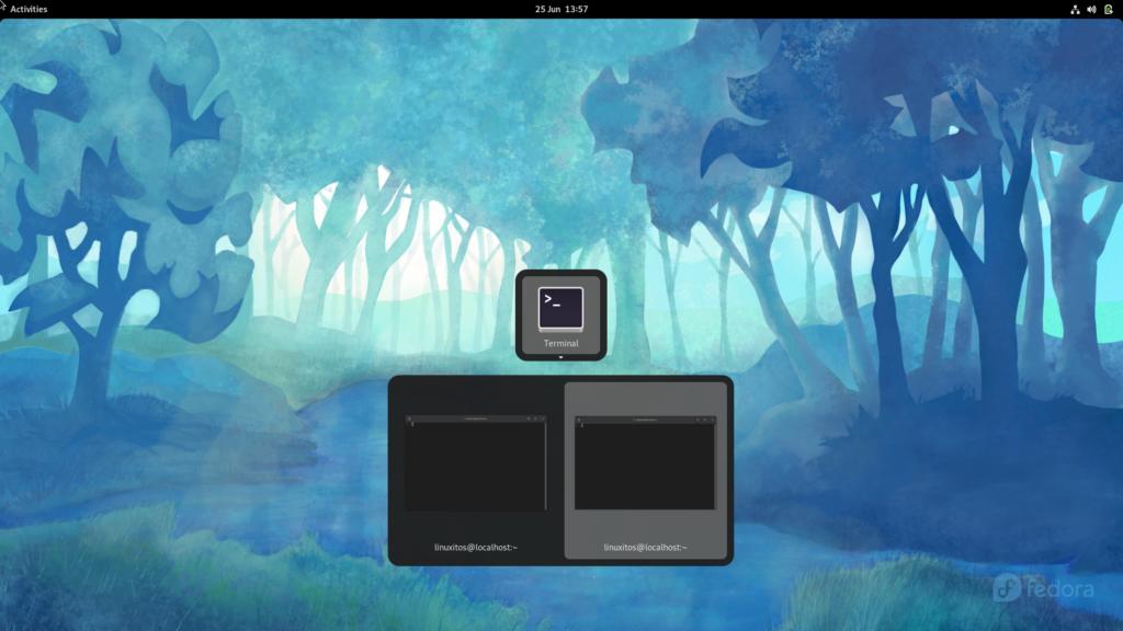 Alt+Tab separar ventanas en Gnome 40   Fedora 34